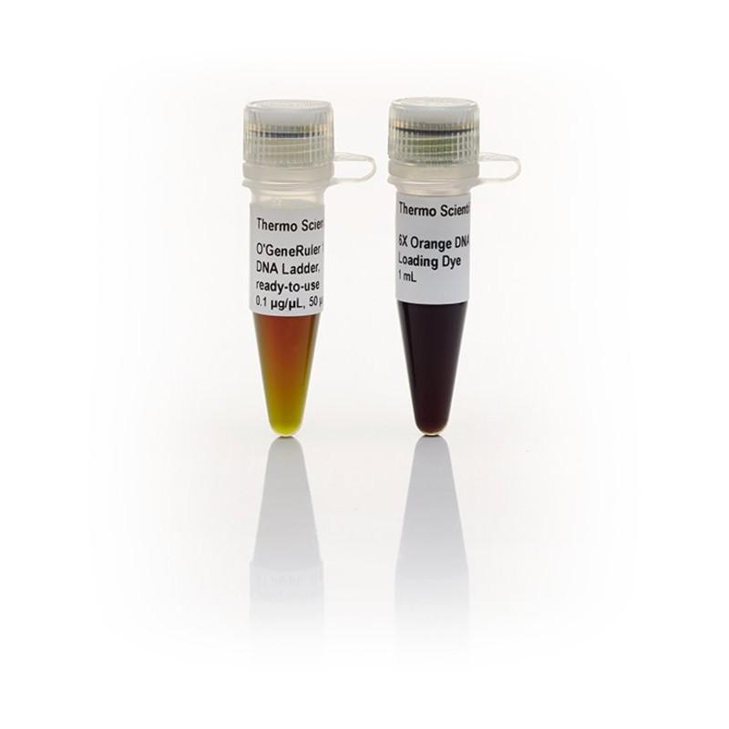 O'GeneRuler смесь ДНК маркер, готовый к использованию
