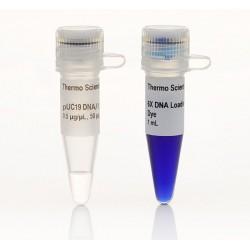 Маркер pUC19 ДНК/MspI (HpaII)